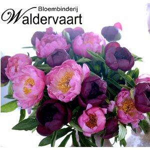 Bloembinderij Waldervaart logo