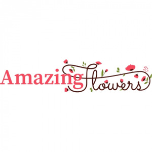 Amazing Flowers logo