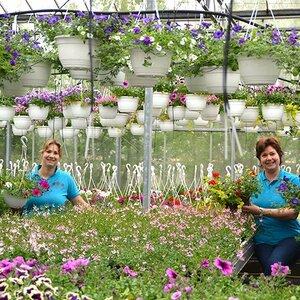 vof Tuincentrum Schoutenbos image 3