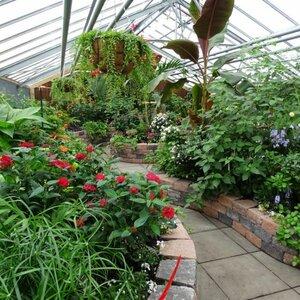 Hortus Overzee image 3