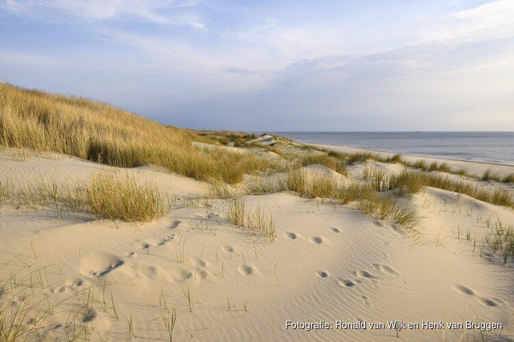 Dynamiek weer terug in de duinen