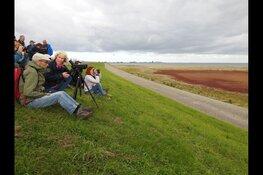 Excursie in vogelparadijs Balgzand