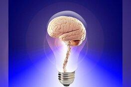 Stimuleer uw hersens met Geheugentraining
