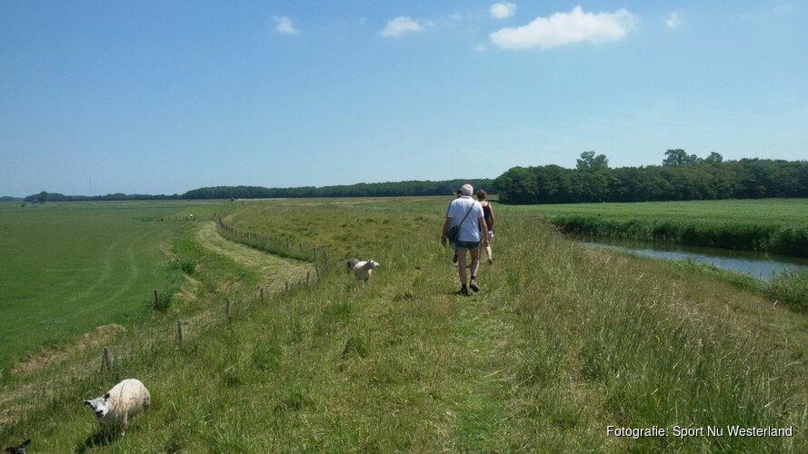 Wandelen over dijken en door landerijen op Wieringen!