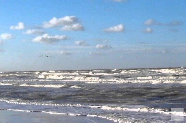 """Geen explosieven gevonden op strand Den Helder: """"Maar we gaan door"""""""