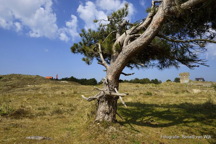 Zwerftocht langs dijk, polder en stad